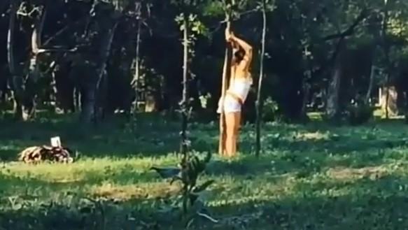Стриптиз в Дубовой роще: пьяная жительница Запорожья использовала молодое дерево в качестве пилона