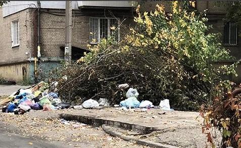 Свалка в Александровском районе: жители Запорожья бросают мусорные пакеты на кучу