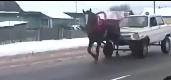 """""""Нет денег на растаможку"""" – , сеть порвало видео с Запорожцем и лошадью"""